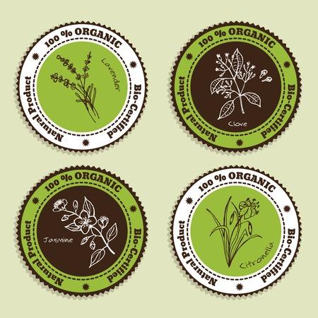 Set of Natural Organic Product badges. Labels for Essential Oils. Lavender, Citronella, Jasmine, Clove Illustration