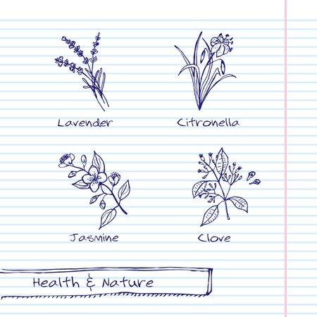 Handdrawn Illustration - Health and Nature Set Illustration