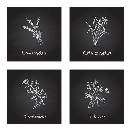 으로 handdrawn 그림 - 건강과 자연 설정