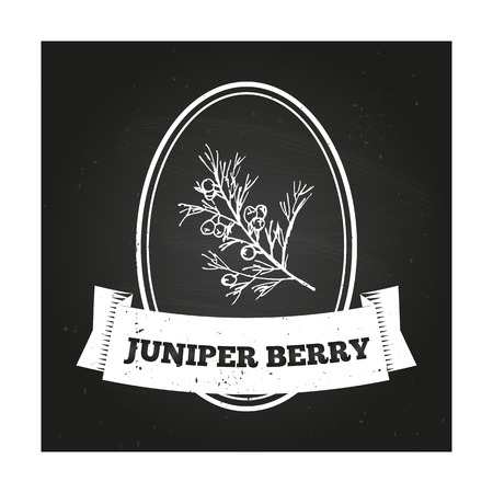 Health and Nature Collection. Badge template with a herb on chalkboard background. Juniper berry
