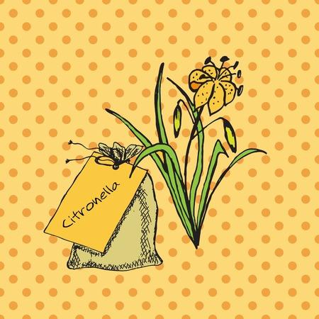 Santé et Nature Collection. Herbes et un sac sur fond transparent tacheté. Citronnelle - Citronnelle