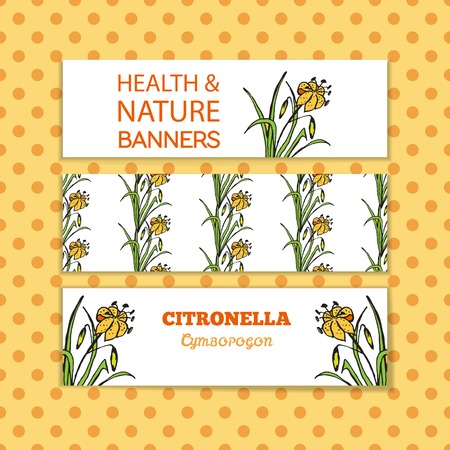 Health and Nature Collection. Banner templates with a herb on spotted seamless background. Citronella - Cymbopogon citratus Vectores