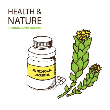 Health and Nature Supplements Collection. Rhodiola Rosea -  golden root