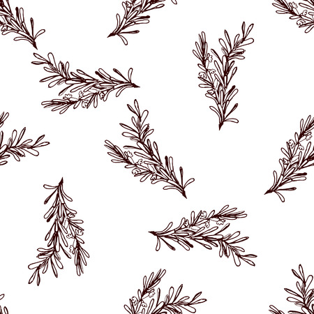 Herbs and Spices Collection - Clove. Seamless pattern with handdrawn elements. Suitable for packaging and identity designs