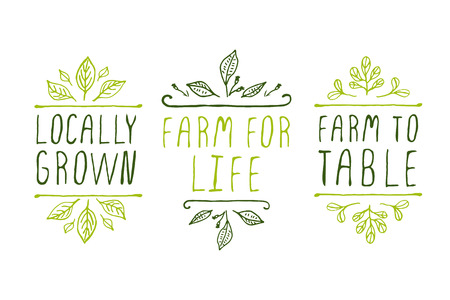 Hand-sketched typographic elements. Farm product labels. Suitable for ads, signboards, packaging and identity and web designs. Locally grown. Farm for life. Farm to table. Imagens - 44621279