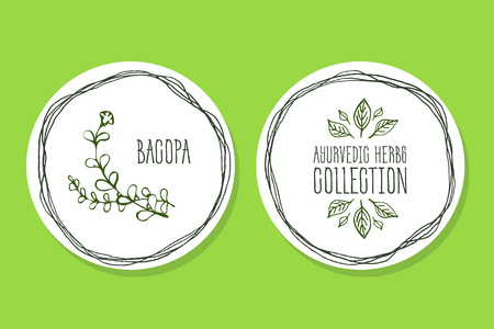 Ayurvédique Collection Herb. Illustration Handdrawn - Santé et Nature Set. Suppléments naturels. Ayurvédique Label Herb avec Bacopa