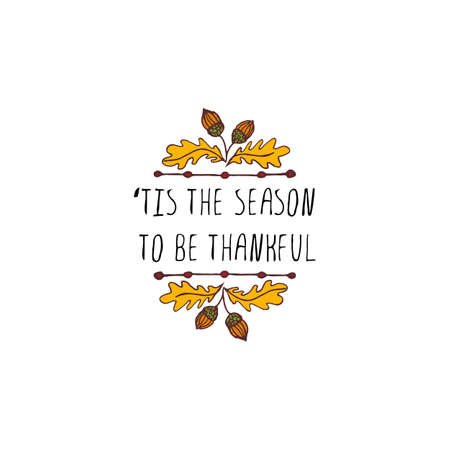 Handdrawn thanksgiving label with acorns and text on white background. Tis the season to be thankful.