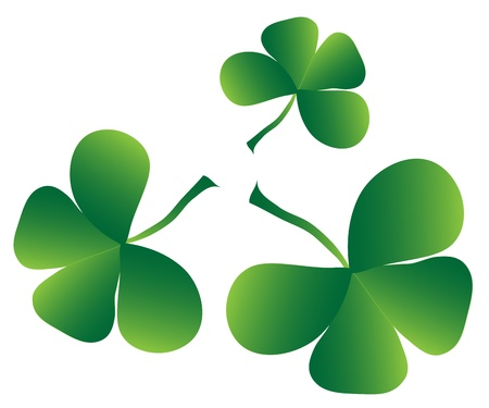 saint patrick��s day: Clover four leaf for saint patrick s day