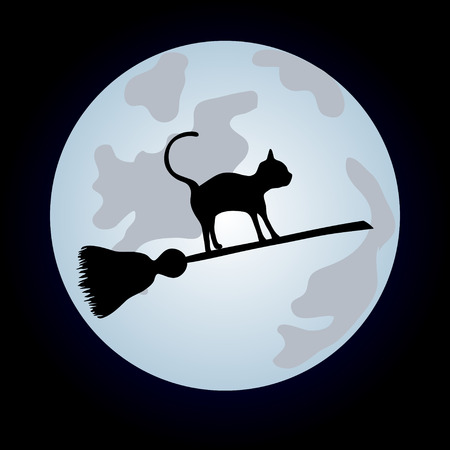 Black cat flying on a sweeper on the night sky. Vector illustration to Halloween Vector