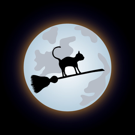 sweeper: Black cat flying on a sweeper on the night sky. Vector illustration to Halloween Illustration