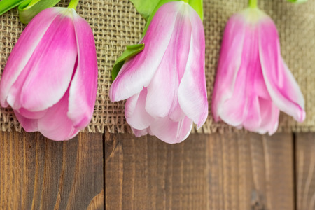 Row of tulips on wooden background with space for message. Mothers Day background.