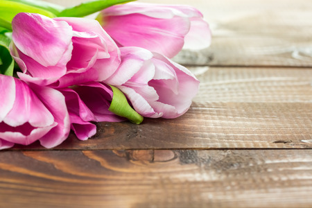 beautiful pink tulips lying on the burlap on the background of old brown boards.