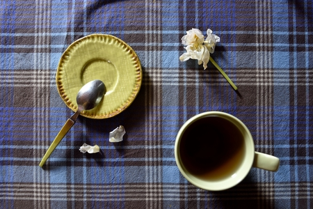 expressed: Cup of hot drink with spoon dish on little green and white tulip, flat-lay
