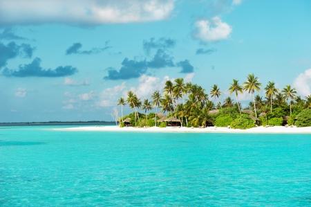 Playa tropical de arena blanca con palmeras