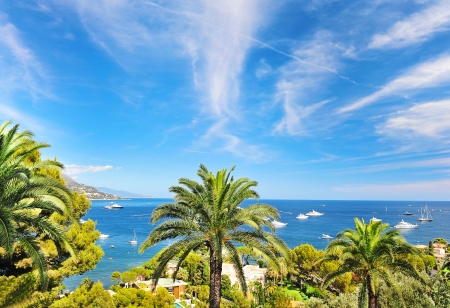 villefranche sur mer: sea landscape with palm trees and blue sky Stock Photo