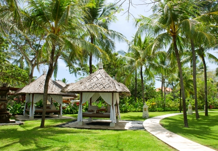 beautiful tropical garden with relaxation bed