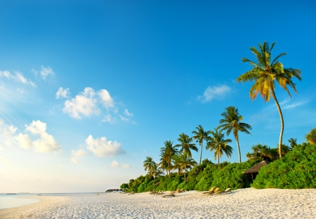sunrise beach: beautiful sunset at tropical beach. island of maldives