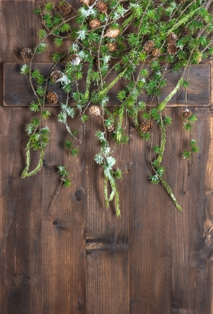 green christmas tree branches hanging over rustic wooden background photo