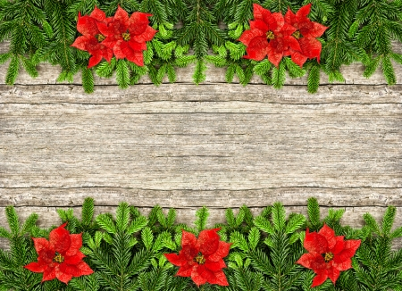 undecorated: fresh christmas tree branches over rustic wooden background. border from undecorated evergreen twigs and red poinsettia flowers