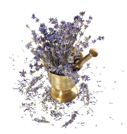 vintage mortar with dry lavender flowers over white photo