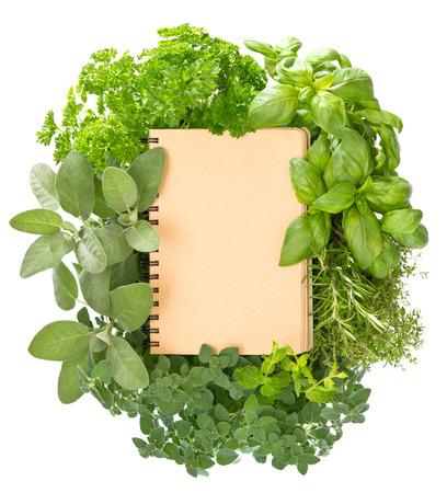 Lege receptenboek met diverse verse kruiden op een witte achtergrond Stockfoto - 24251911