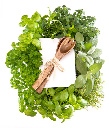 fresh kitchen herbs and decoration over white  cooking background photo