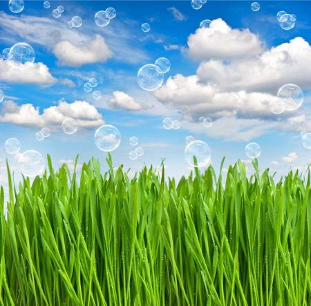 fresh green spring grass with water drops over beautiful blue sky with air bubbles  environment concept photo
