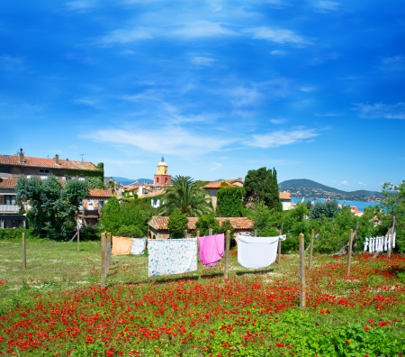 Beautiful view of Saint-Tropez with poppy field, seascape and blue sky  French riviera, France photo