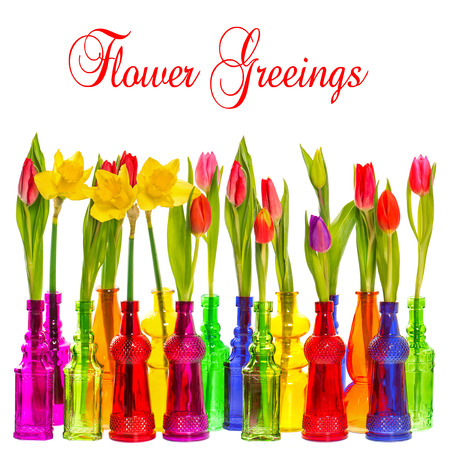 many tulip and narcissus flowers in colorful glass vases on white background with sample text Flower Greetings photo