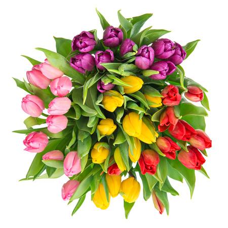 mazzo di fiori: bouquet di tulipani multicolore fresco isolato su sfondo bianco