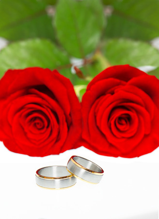 wedding rings and beautiful red roses photo
