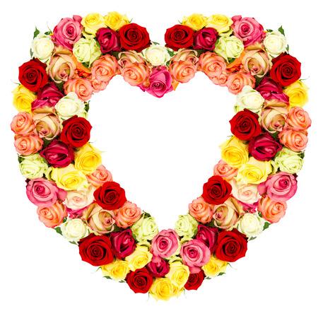 roses flower shaped HEART isolated on white background photo