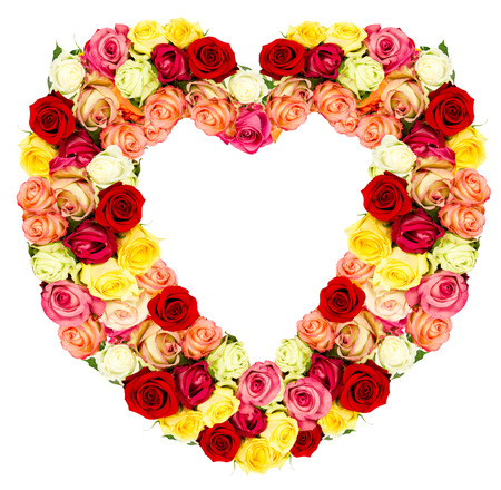 roses flower shaped HEART isolated on white background photo