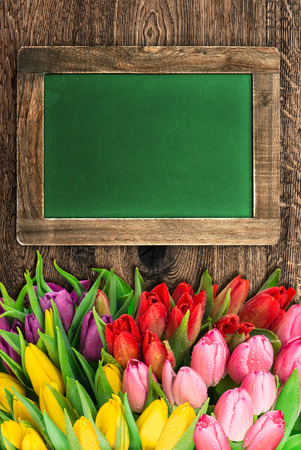 yeloow: blackboard with colorful tulip flowers and space for your text Stock Photo