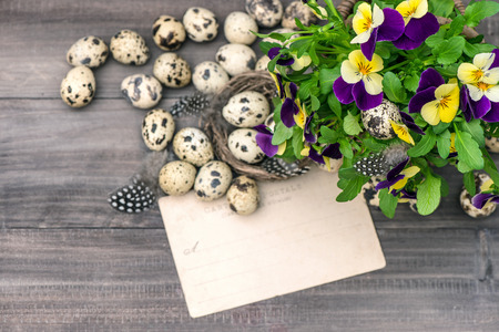 pansy flowers, quail eggs and greeting card  easter decoration photo