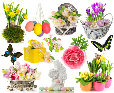 set of spring flowers, easter eggs, butterfly  easter decorations isolated on white background photo