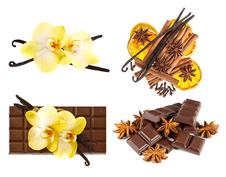 vanilla pods and orchid flower  chocolate and spices isolated on white background photo