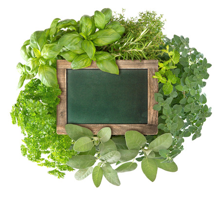 blank green blackboard with variety fresh herbs over white background  empty chalkboard for your text