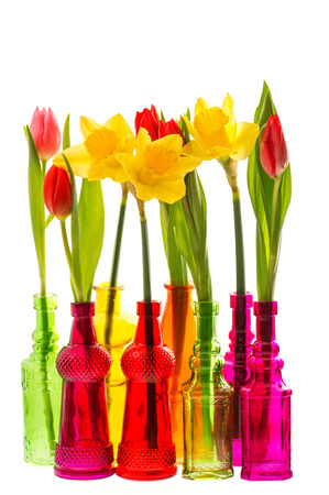 april flowers: tulip and narcissus flowers in colorful glass vases on white background Stock Photo