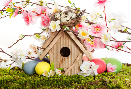 colorful easter decoration with birdhouse and eggs on green grass  spring apple and cherry blossoming photo