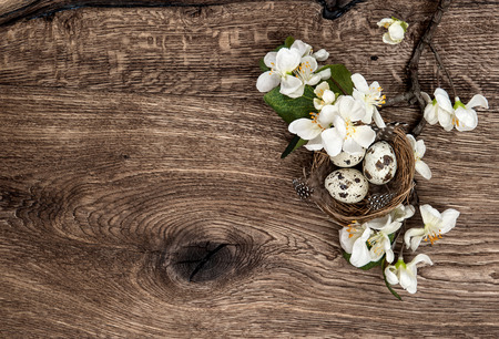 flowers and easter nest with eggs on rustic wooden background  spring apple tree blossom photo