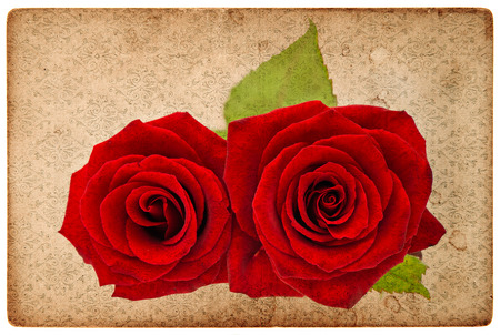 vintage grunge paper card board with red roses photo