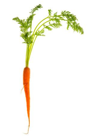marchew: świeże single marchew z zielonymi liśćmi samodzielnie na białym tle pokarm roślinny Zdjęcie Seryjne