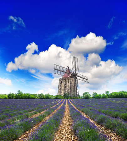 Lavender field in Provence, France  Landscape with windmill and beautiful blue sky photo