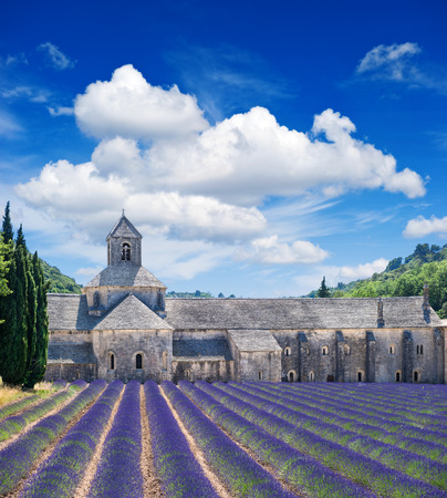 herbs de provence: Senanque abbey with lavender field, landmark of Provence, Vaucluse, France  Beautiful landscape with medieval castle and cloudy blue sky