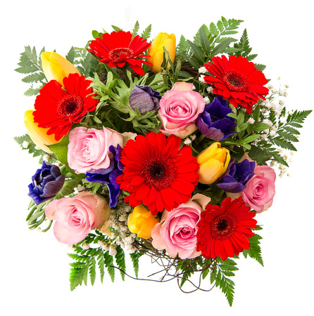 fresh colorful spring flowers arrangement  pink roses, red gerbera, yellow tulips, blue anemone
