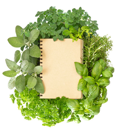 empty recipe book cover with fresh mediterranean herbs over white background Banco de Imagens