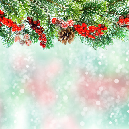 christmas tree branch decoration with red berrries on blurred background  festive arrangement 스톡 콘텐츠