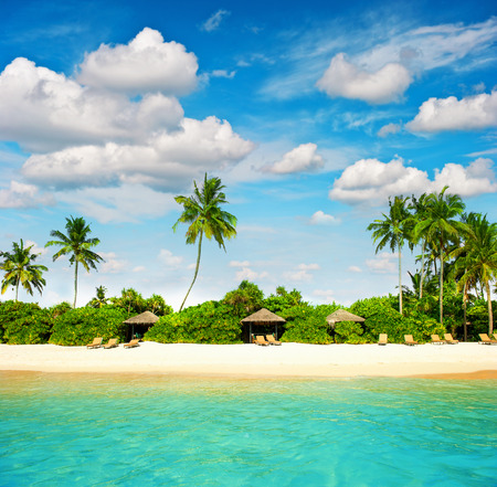 view on sea: tropical island beach with perfect blue sky  paradise island with palm treas Stock Photo