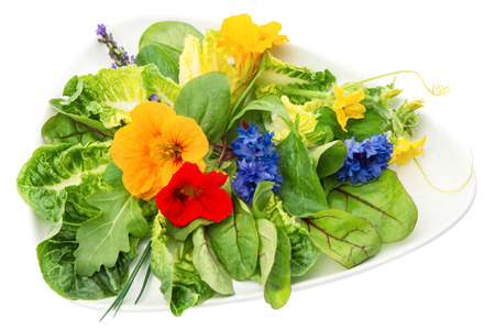 fresh green salad with edible garden flowers isolated on white background  healthy food photo